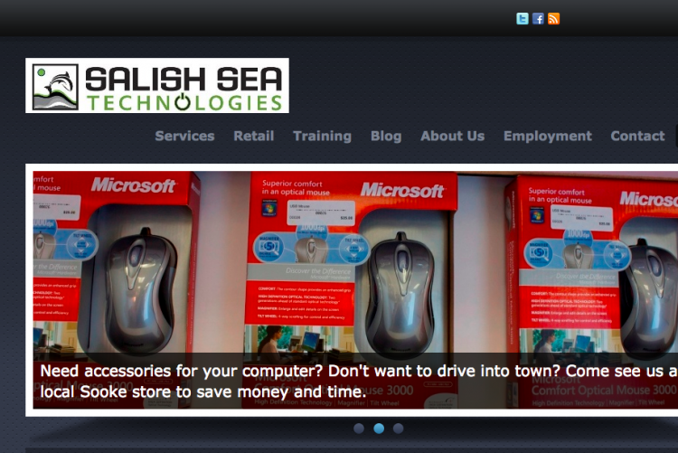 Authentic portfolio: an image of salish sea technologies' website